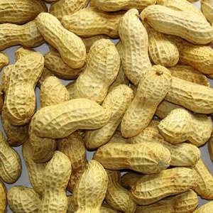 Земляной орех арахис является очень ценным продуктом.