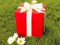 лучший свадебный подарок
