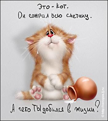 смешные рисунки кошек: