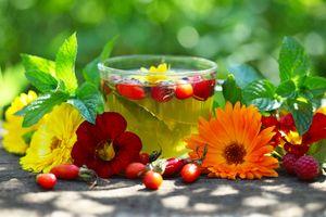 http://sovettebe.ru/wp-content/uploads/2012/10/kakie-chai-poleznyi_travyanoy-chay2.jpg